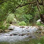 Valle del Fiume Tellaro